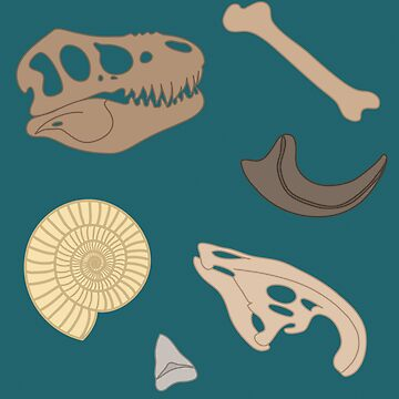 Dino Fossils Blue by deliinthesky