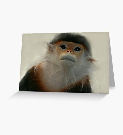 Critically Endangered Doucs Langur Greeting Card