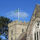 Flying The Flag For St. Petroc's by lezvee