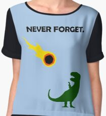 Never Forget (Dinosaurs) Women's Chiffon Top