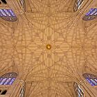 Saint Patrick's Cathedral. Ceiling.  by Alex Preiss