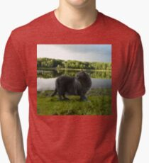 Cat with pond and landscape scenery  Tri-blend T-Shirt