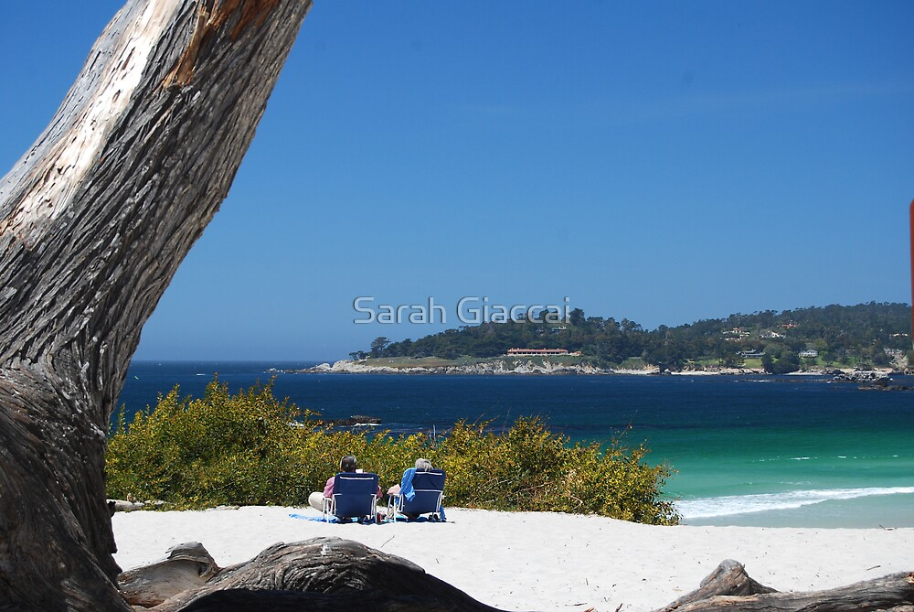 Carmel by the Sea by Sarah Giaccai