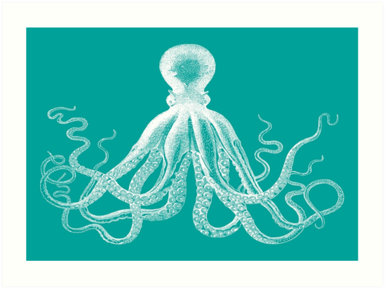 Octopus | Teal and White by EclecticAtHeART
