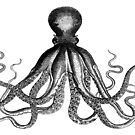 Octopus   Vintage Octopus   Tentacles   Sea Creatures   Nautical   Ocean   Sea   Beach   Black and White    by EclecticAtHeART