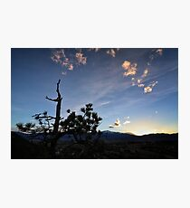 Palmer Park Sunset Photographic Print