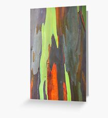 Colorful peeling bark - 2011 Greeting Card