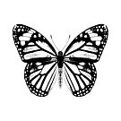 Monarch Butterfly   Vintage Butterflies   Black and White    by EclecticAtHeART