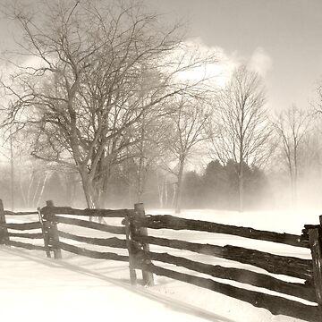 Winter Drift 2 by Rebelx