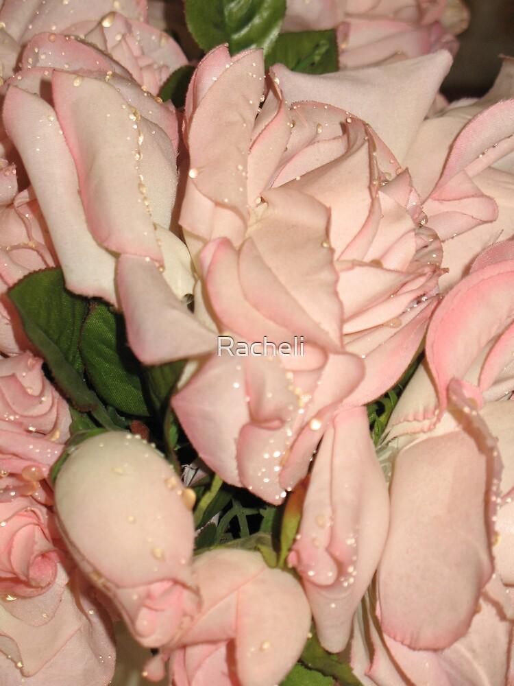 Lovely Pink Roses by Racheli