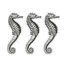 Seahorse Trio   Vintage Seahorses   Three Seahorses   Black and White    by EclecticAtHeART