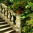 Steps to Heaven by newbeltane