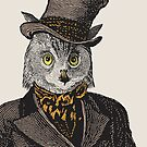 Owl Portrait   No.1 of 2 from The Owl and the Pussycat Set   Anthropomorphic Owl   Vintage Owls    by EclecticAtHeART