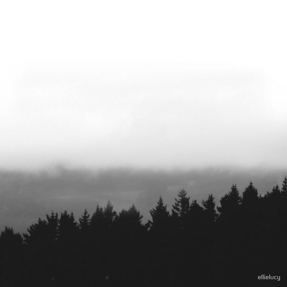 Tree Silhouette by ellielucy