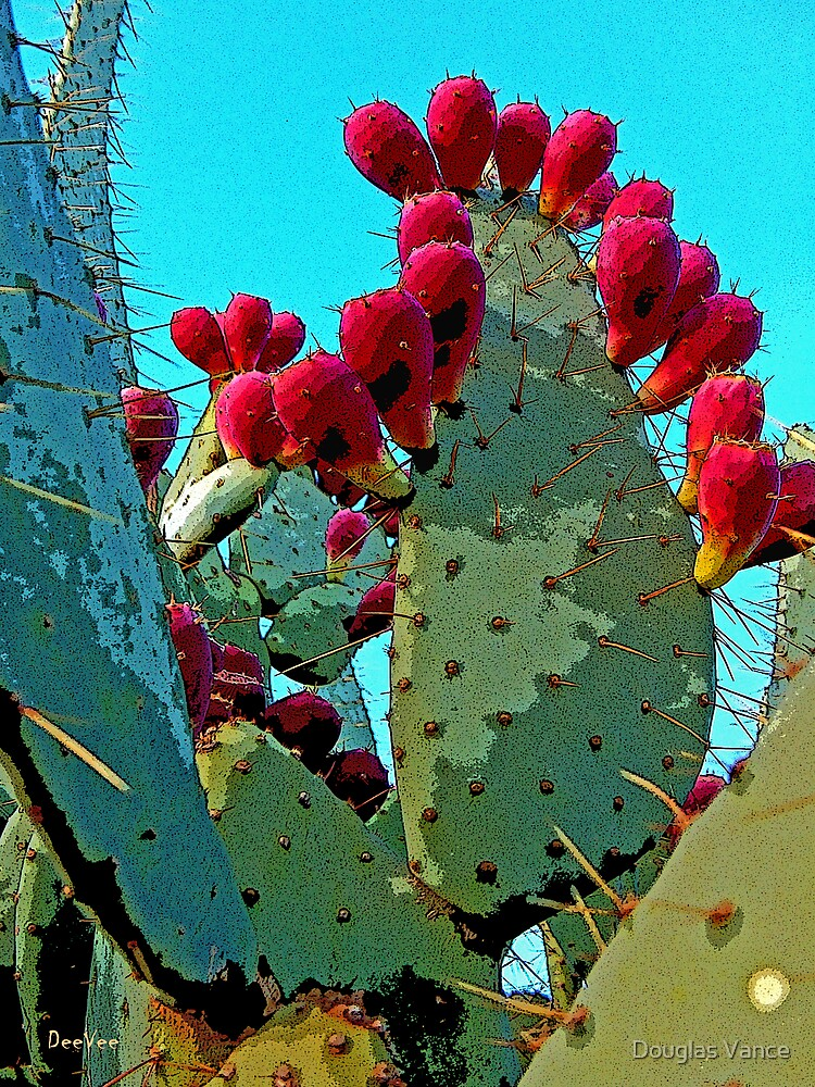 Cactus Apples by Douglas Vance