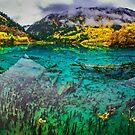 The Wuhua Lake Panorama 五花海全景 by Daniel H Chui