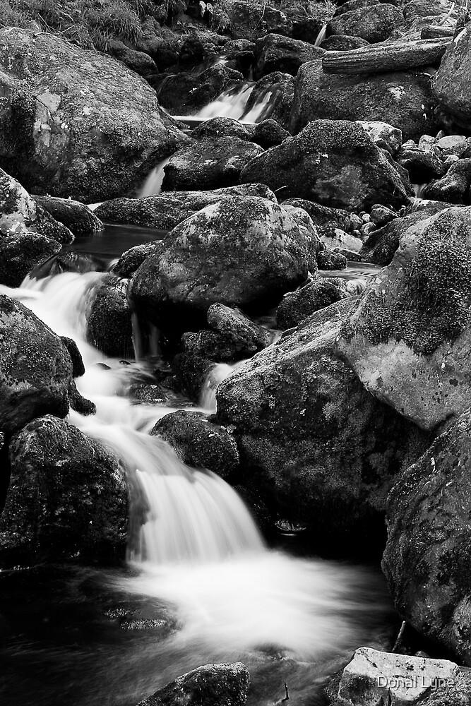O'Sullivan's Cascade by Donal Lyne