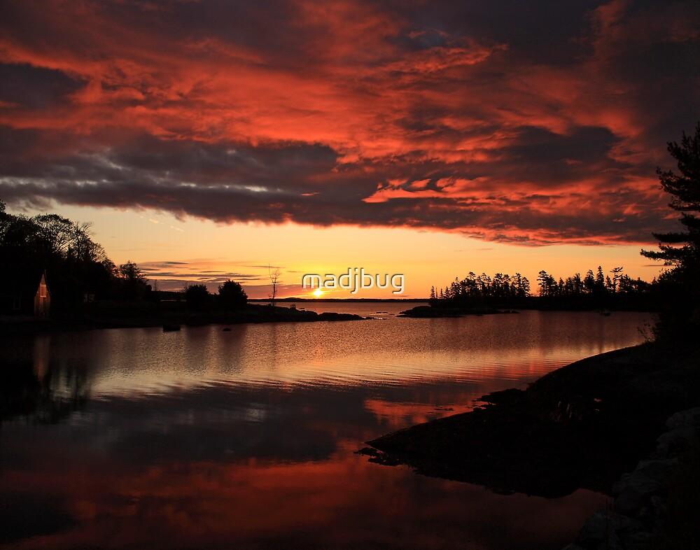 Beautiful Sunrise by madjbug