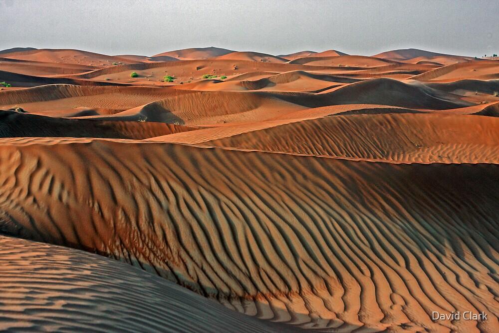 Dune Sunrise by David Clark