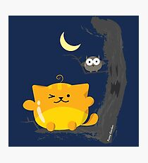 Halloween - Cat and Owl Mochi Friends  Photographic Print