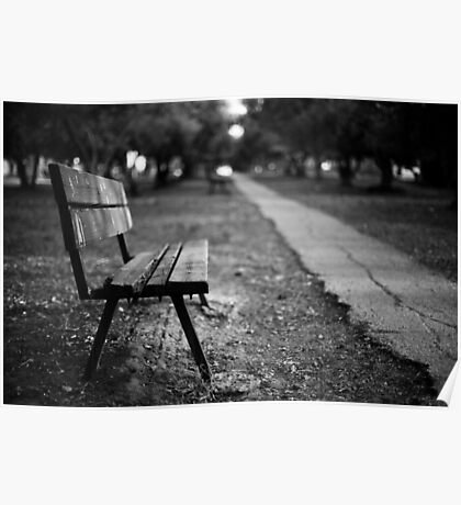 bench in park Poster