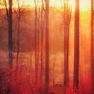 Scarlet Haze by Dirk Wuestenhagen
