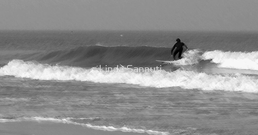 surfer dude by Linda Sannuti