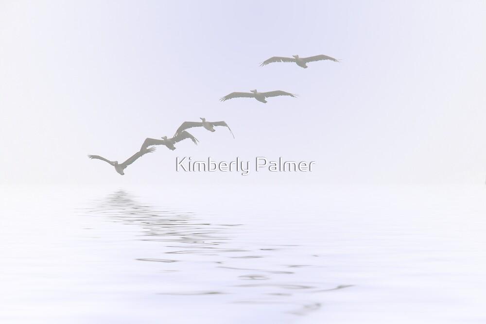 Pelicans Foggy Flight by Kimberly Palmer