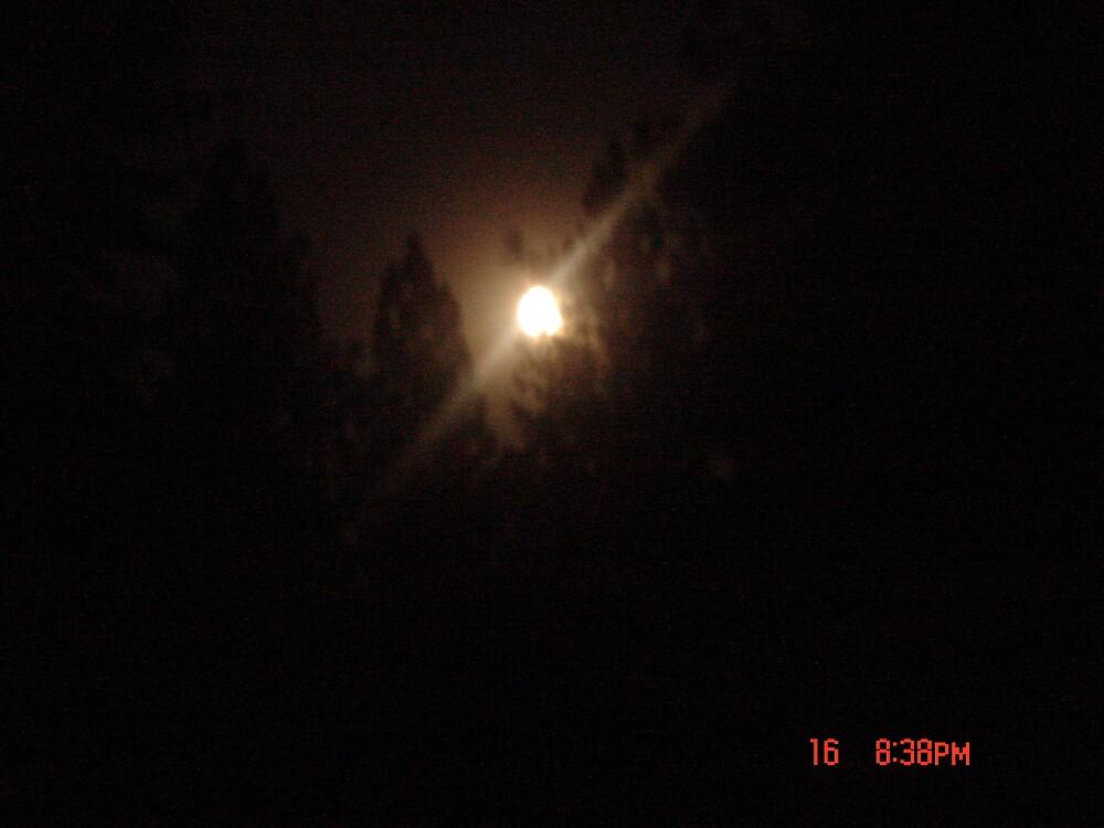 Midnight Moonlight by lazylightning