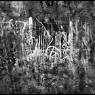 Aboriginal Rock Art  by Angelika  Vogel