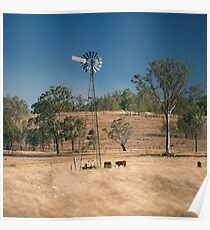 Windmill and cows in the countryside during the day. Poster