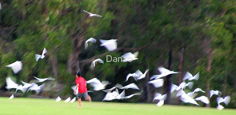 Taking flight by Danzo