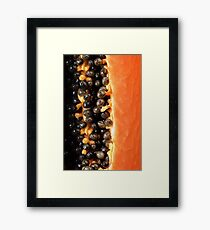 Papaya fruit halved macro Framed Print