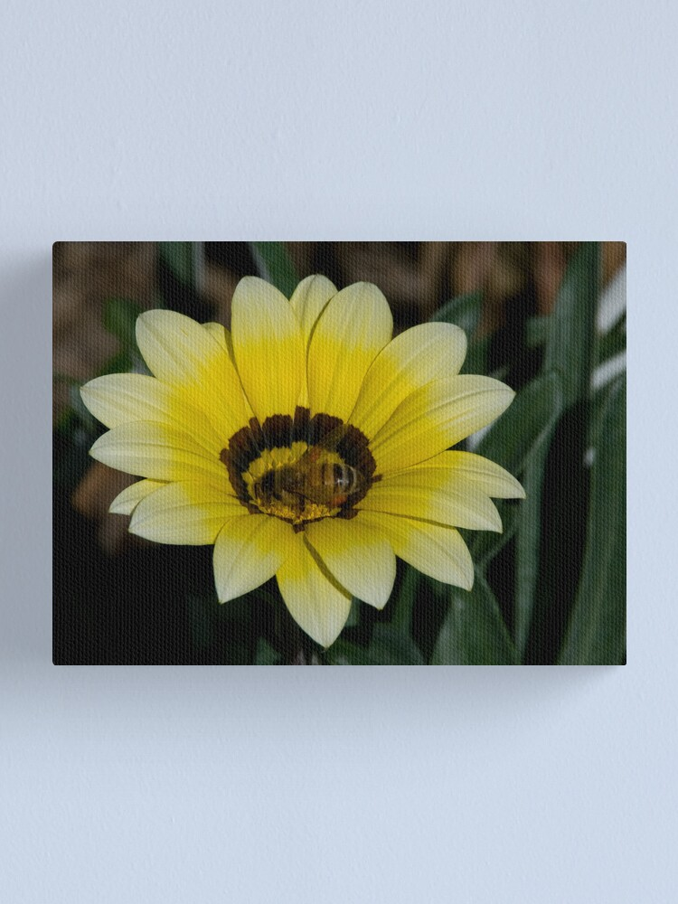 Alternate view of Bee Me Canvas Print
