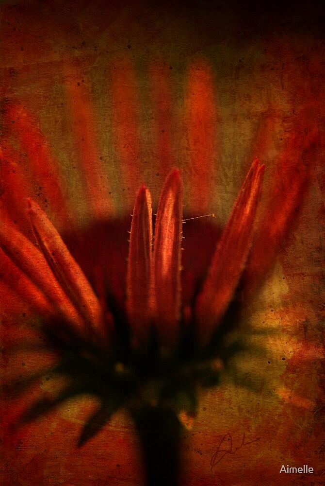 floris by Aimelle