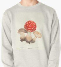 Mushrooms Pullover