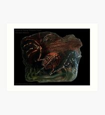 Mythical Flying Trilobite Fossil I Art Print