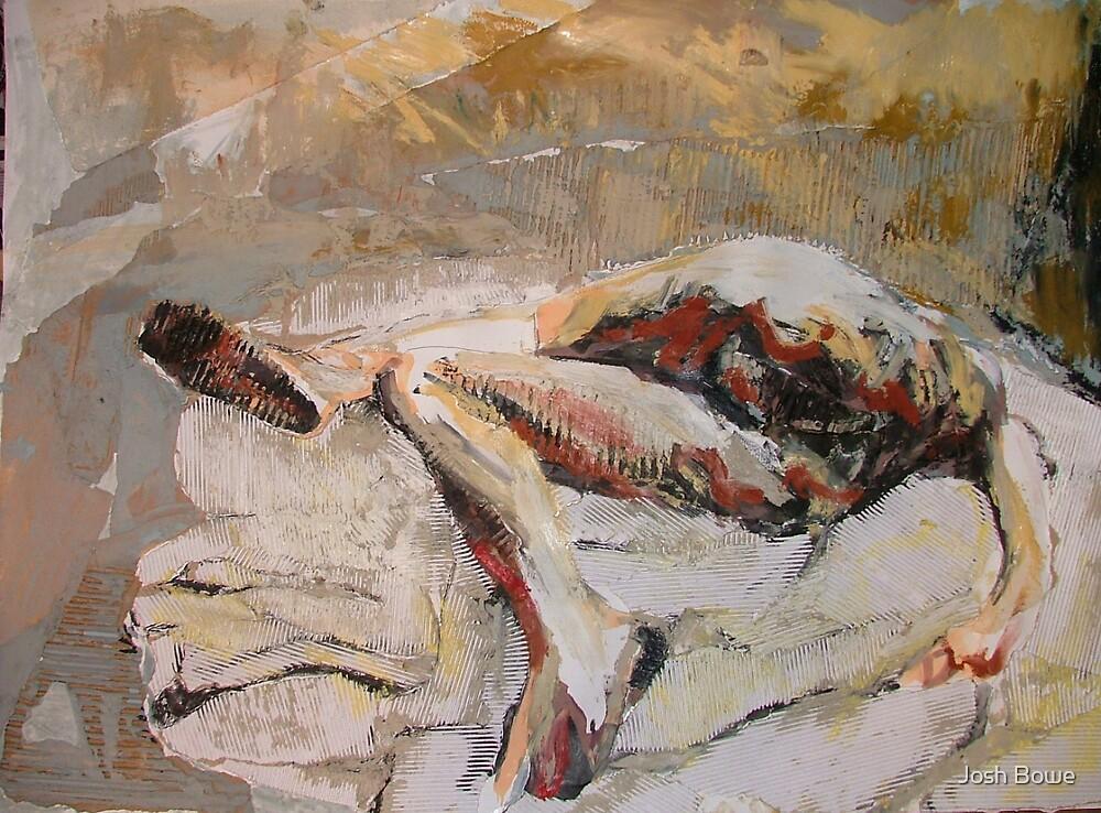 Laying figure(Collage) by Josh Bowe