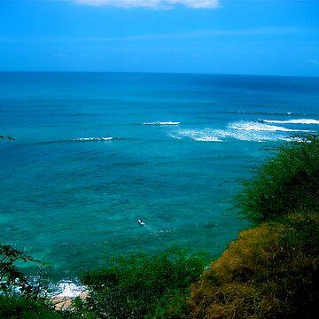 Hawaiian Escape by Xtian