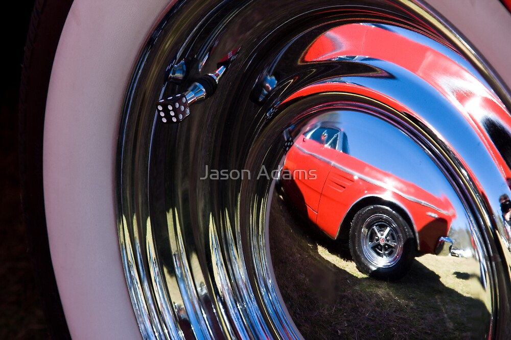Falcon Reflection by Jason Adams