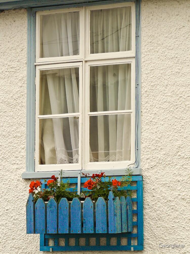 Window with flowers by Georgiana