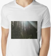 Morning Forest Sunlight T-Shirt