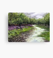 Denny Wood Canvas Print
