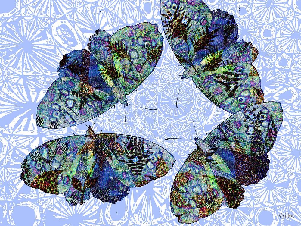 butterflies by Wilko