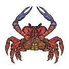Colorful Crab by zaxophona