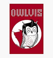 Owlvis (Elvis Parody) Photographic Print