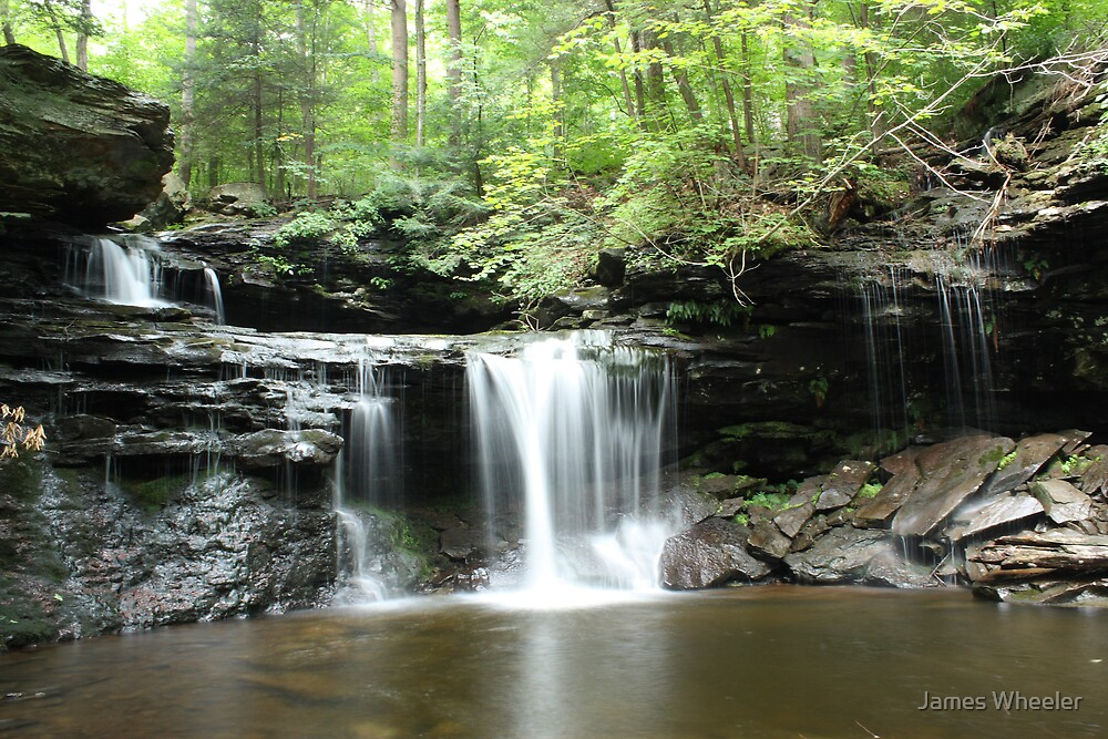 PA State Parks: Ricketts Glen SP by James Wheeler