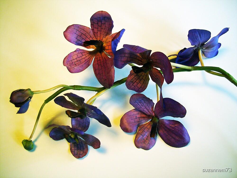 Purple Orchids by suzannem73