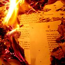 BURN YOUR POETRY!! by Vimm