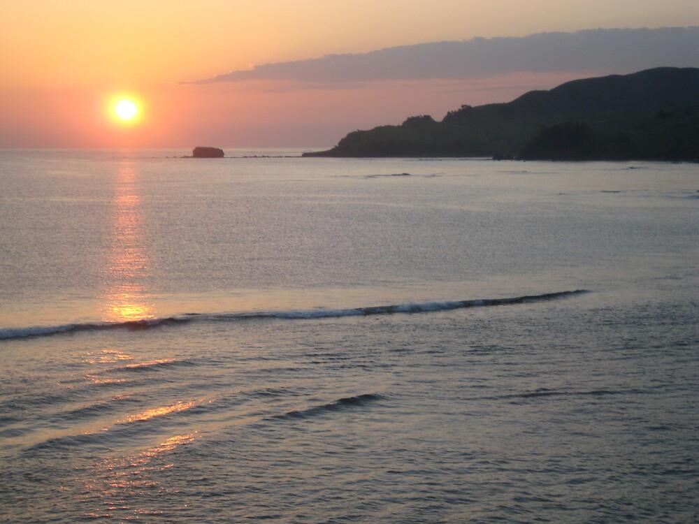 Island Sunrise by Julia  Brown